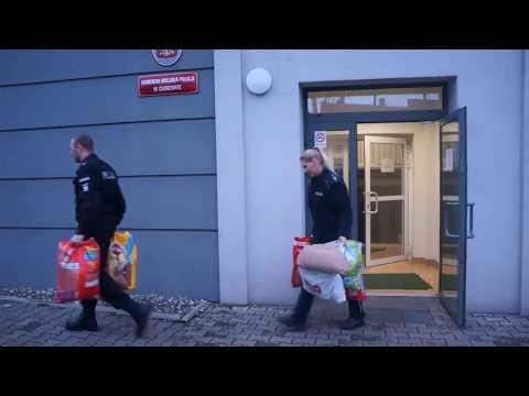 [2017.01.30] Policjanci pomagają zwierzakom