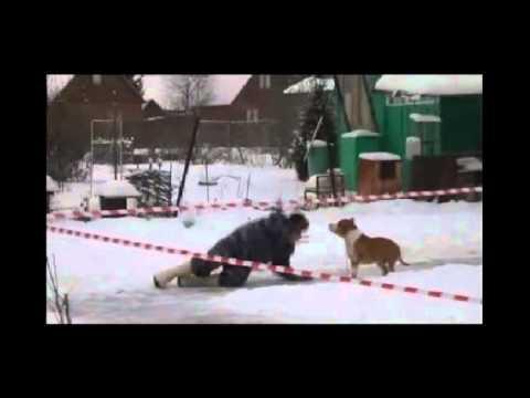Экстримальный Деревенский ХЕНДЛИНГ при t -20 (ЮМОР)