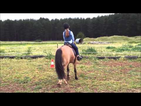 My Horse Riding Story (July 2012 - December 2014)