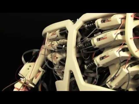 ROBOY Tendon Driven Humanoid Robot (Legendado)