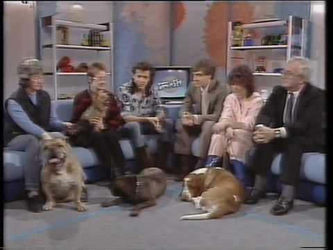 Pedigree dog problems +  Kennel Club response in 1985