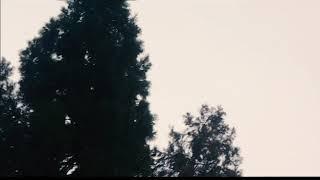 To Leave Something Behind by Sean Rowe - Music Video