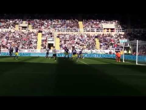 Newcastle United v Swansea 19/04/2014 Shola Ameobi