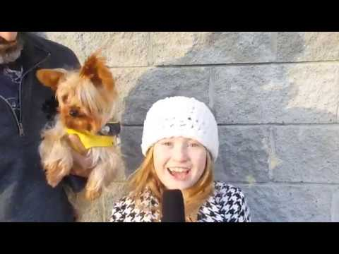 Pup Star: Better 2Gether Interviews with Cast & Crew by Abigail Zoe L.