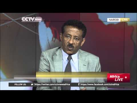 Eritrean Ambassador to Kenya: UN Report is Sickening and Disgusting