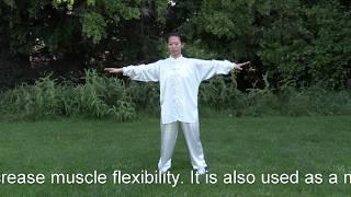 Yi Jin Jing Full 12 Form Qi Gong