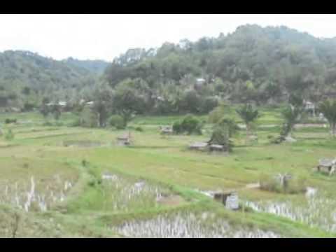 BAMBANG BUDA