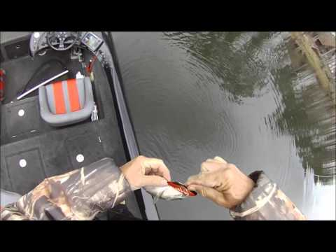 Bass Fishing Toledo Bend Feb 8 2013
