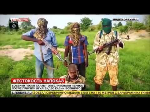 Боевики «Боко Харам» обезглавили пленного  Последние Новости  Последние Новости Мира
