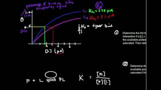 Graphical Estimation of Kd from P:L Binding Plot