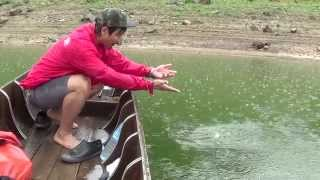 Bangkokhooker - Lure Fishing in Thailand Compilation 1