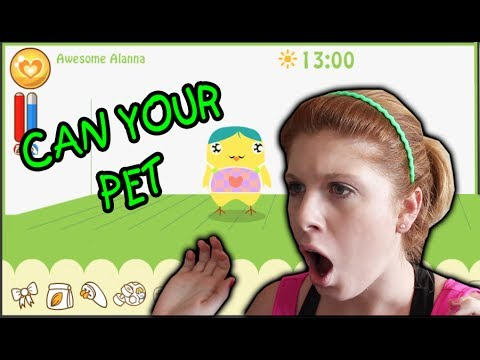 Can Your Pet Game!
