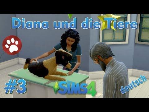 Sims 4 - Diana und die Tiere #3 - Diana heilt einen kranken Hund