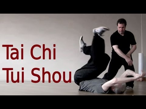 Tai Chi Tui Shou Training 太极推手教学 Image 1