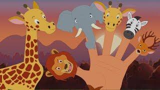 Động vật Ngón tay gia đình | nhac thieu nhi hay nhất | Animal Finger Family | Kids Baby Club Vietnam