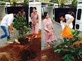 Fahadh Nazriya Celebrated World Family Day   Hot Malayalam Cinema News