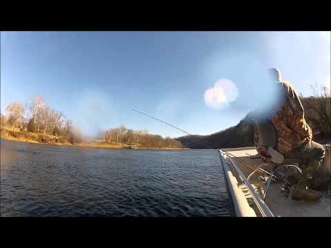 Janaury 2013 White River Arkansas Trout Fishing