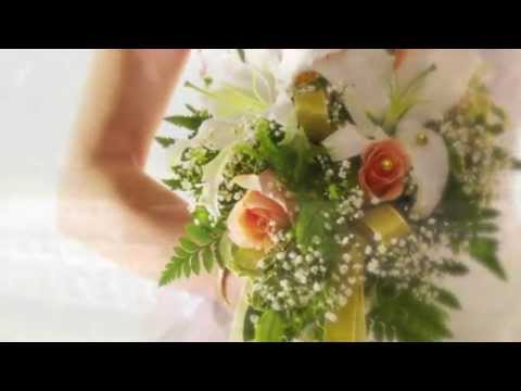 Here Comes The Bride (harp) video