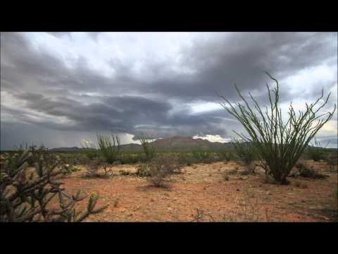 Desert Monsoons
