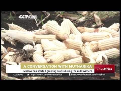 TALK AFRICA: President Peter Mutharika's action plan for Malawi