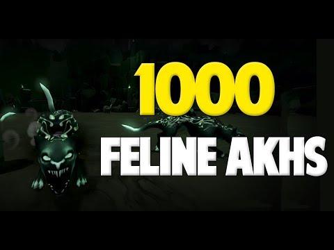 Runescape 2017   Loot from 1000 Feline Akhs