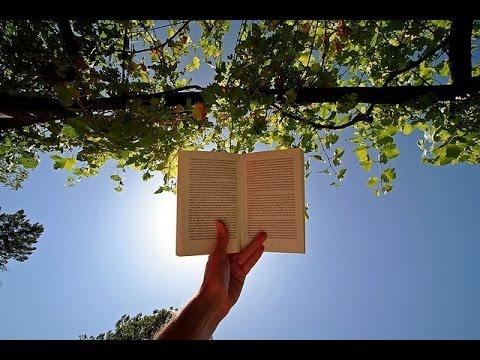 Чтение книг оказывает на мозг эффект реактивного ускорителя