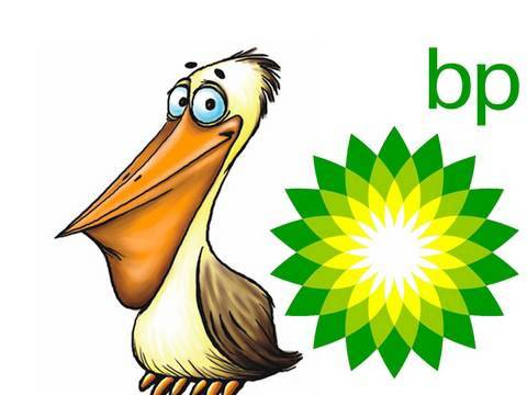 BP Oil Spill Commercial: Pelican Scrubbing!