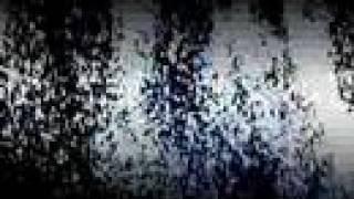 Watch Kings Of Leon Velvet Snow video