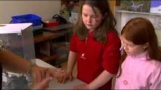 "Dublin Zoo - Pre-school ""Tiny Tots"" programme"