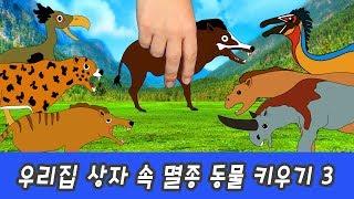 한국어ㅣ우리집 상자 속 멸종된 동물 키우기! 신생대 동물 이름 외우기, 멸종동물 특집, 컬렉타ㅣ꼬꼬스토이