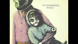 Watch Chameleons Less Than Human video