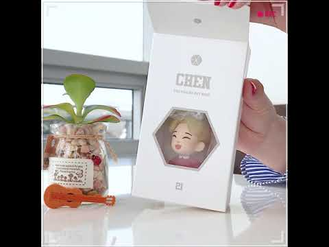 EXO FIGURE KEYRING UNBOXING CAM! (CHEN ver.)