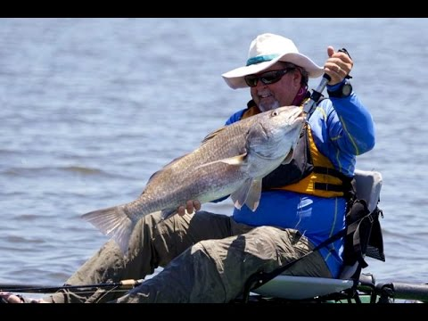 Jim and Damon Fight Big Black Drum in Levy County, Florida