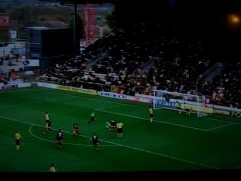 ref celebrating Chris Iwelumo's goal against Watford.