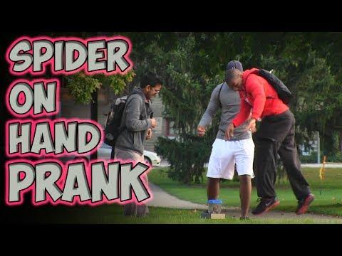 Spider On Hand Prank [MagicOfRahat Prank]