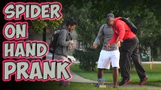 Spider On Hand Prank