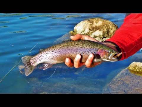 Big Bear Lake Rainbow Trout Fishing with Dallas 12-11-2011