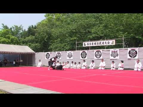 Shorinji Kempo May 5th, 2010 Nagoya Castle Image 1