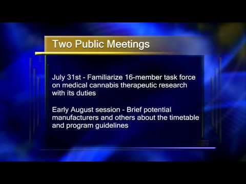 Two Public Meetings on Minnesota Medical Marijuana Program - Lakeland News at Ten - July 16, 2014