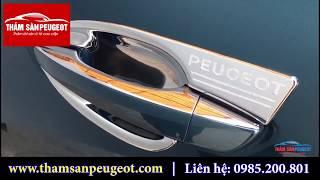 Ốp Chống Xước Hõm Xe ô tô Peugeot 3008 All New Peugeot 5008