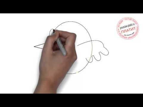 Видео как нарисовать летящую птицу