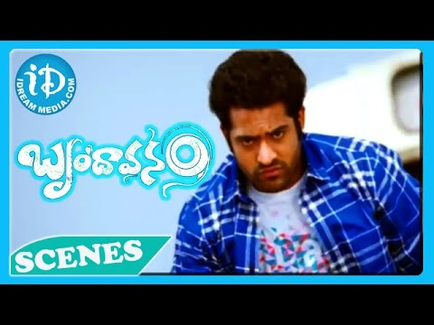 Brindavanam Movie - Ajay Jr NTR Fight Scene