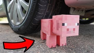 EXPERIMENT: CAR vs Minecraft PIG