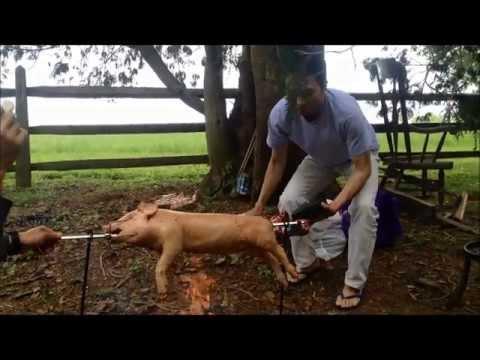 cara memasak babi guling