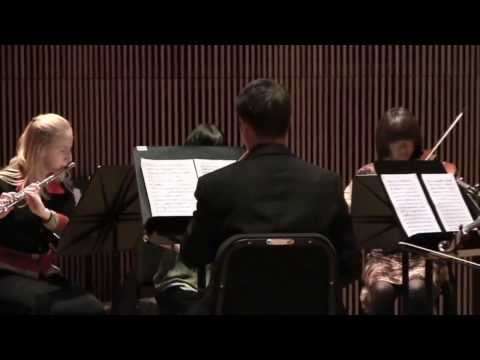 Douglas Townsend's CHAMBER CONCERTO NO. 3 FOR FLUTE, HORN, PIANO AND STRINGS (1970)