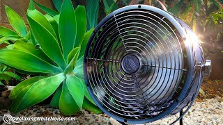 Fan Noise for Sleeping | Also helps you Study, Focus, Soothe Baby | 10 Hours White Noise