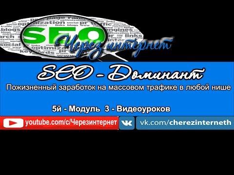 SEO Доминант 5й модуль  5 1 Бонус  Партнерка REG ru