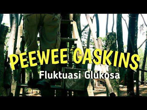 Pee Wee Gaskins - Fluktuasi Glukosa // lirik lagu