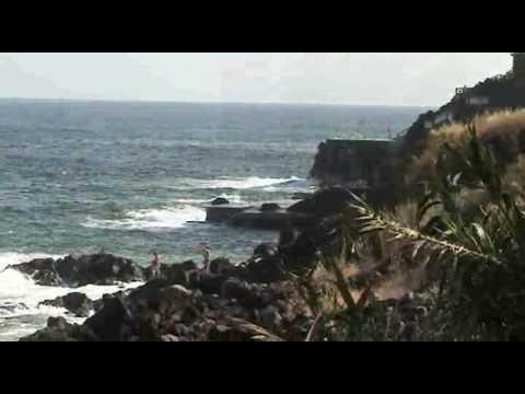 Blumeninsel Madeira - Cani�o de Baixo