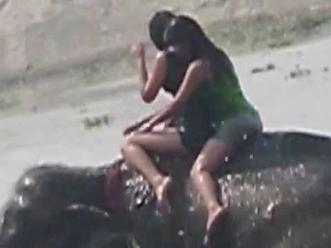 Sexy Nepali Girls on Elephant at River Side Chitwan.AVI
